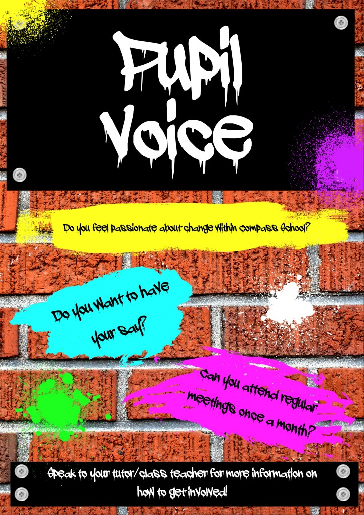 Student Voice Poster